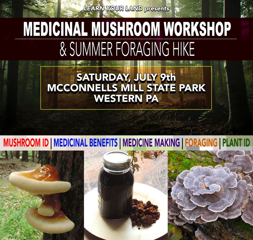 medicinalmushroomevent2016