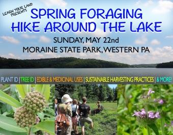 springforaginghikearoundlake3